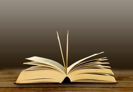 ספרות: דורית פרידמן