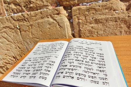 תרבות יהודית: גונן רייכר